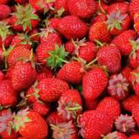 strawberries-berries-fruit-freshness-46174.jpeg